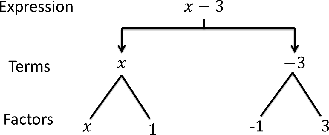Algebraic Expressions worksheet for class 7 | myCBSEguide.com