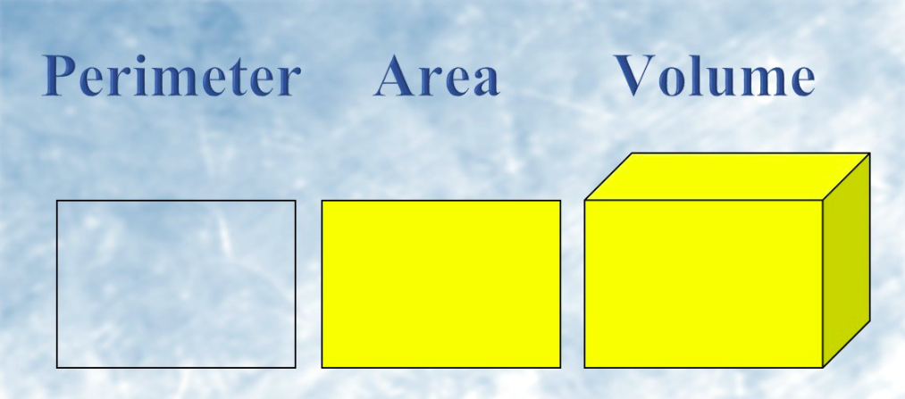Perimeter Area And Volume Worksheet For Class 5 Mycbseguide